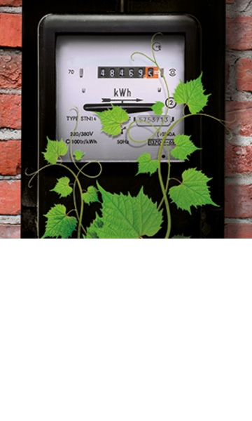 Check the percentage of green electricity guaranteed by your energy supplier