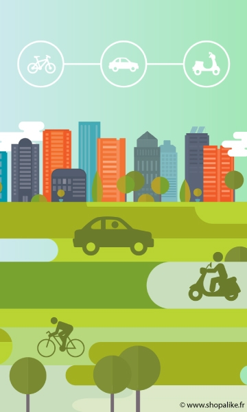 Shared mobility in the smart city