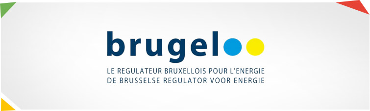 Website van De Brusselse regulator voor energie (BRUGEL – Brussel Gas Elektriciteit)